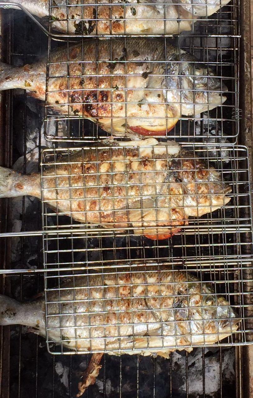 דגים על האש4