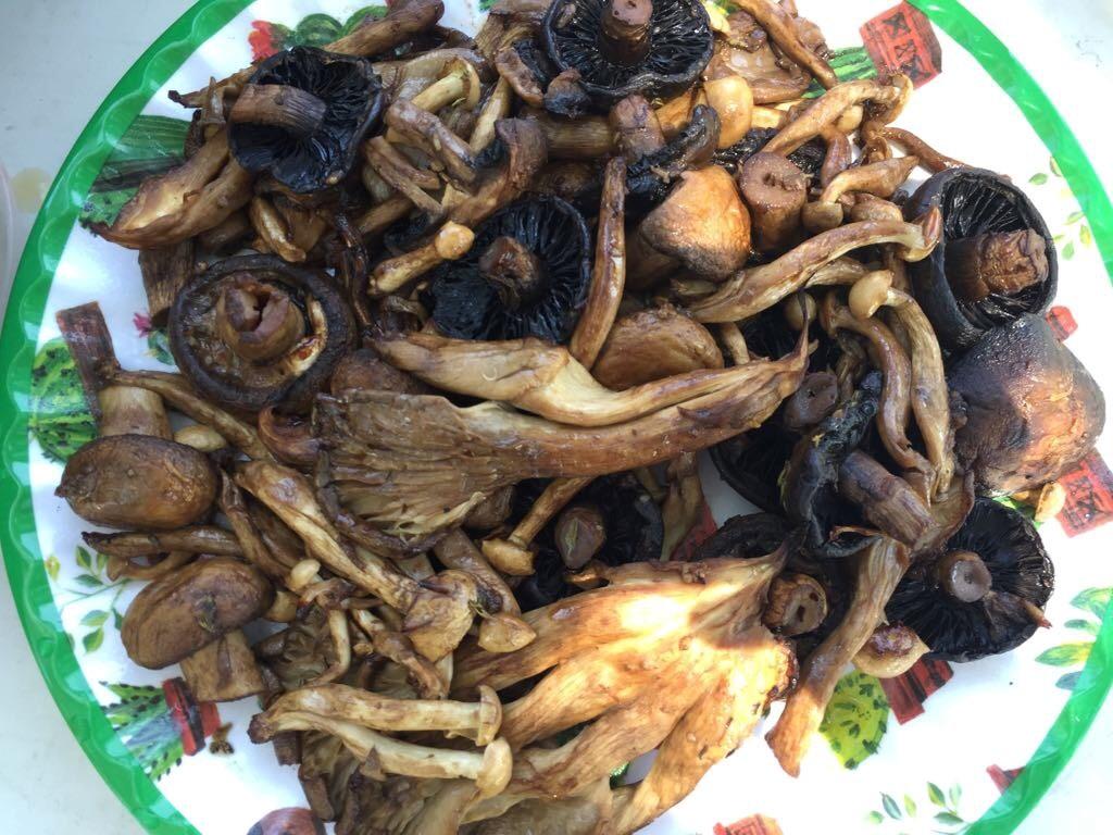 הפטריות על צלחת3